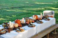 Grateful Harvest Thewhitebuffalostylingco