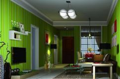 Green Living Room Wall Design House