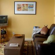 Green Yellow Color Scheme Living Room Clipgoo