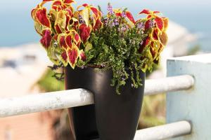 Greenbo Railing Deck Planter Pack Outdoor Living