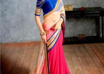 Indian Designer Sarees Shopping