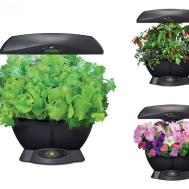 Indoor Garden Hydroponic Growing System Gourmet Herb Seed