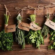 Indoor Herb Garden Slice Blog