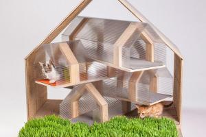 Inspiring Custom Built Modern Cat Houses Revealed