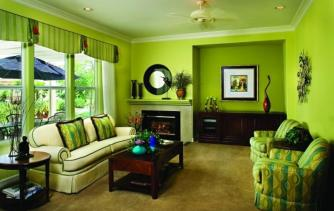 Lime Green Room Accessories Home Design Very Nice Fancy