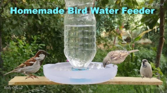 Make Bird Water Feeder Diy Homemade Plastic