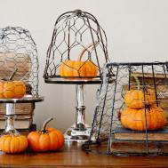 Make Chicken Wire Cloche Halloween