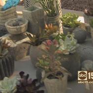 Make Faux Concrete Pots Planters