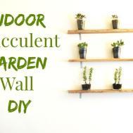 Make Indoor Succulent Garden Wall Art Diy
