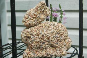 Making Your Own Bird Seed Treats Avoid Catalog