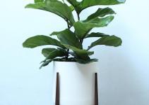 Modern Plant Stand Set Pedestal Walnut Planter