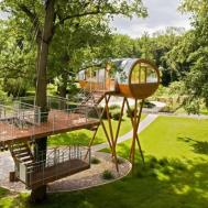 Most Amazing Tree Houses