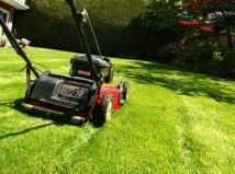Mowing Lawn Sure Scoop Poop First
