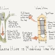 Natural Beekeeping Warre Hive Beecentric