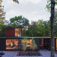 Nifty Modern House Wisconsin Blends Dense