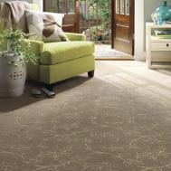 Often Should Your Carpet Professionally Cleaned