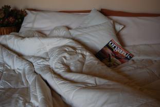 Organic Cotton Quilts Pillows Australian Made