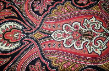 Paisley Fabric Design