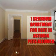 Pet Friendly Bedroom Apartment Rent Astoria