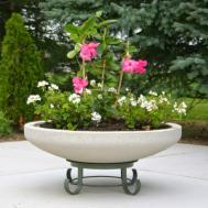 Planters Inspiring Large Round Concrete