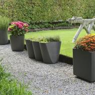 Planting Outdoor Flower Pots Ideas Best Flowers Rose