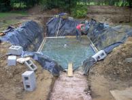 Process Nature Pools Swimming Eco