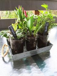 Ready Set Craft Challenge Diy Mason Jar Herb Garden