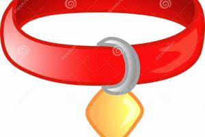 Red Pet Collar Icon Symbol Stock Illustration