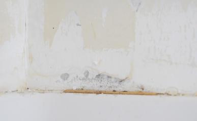 Remove Damage Bauen Diy Home