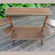Reserved Mid Century Modern Plant Display Stand