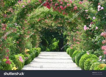 Rose Arch Garden Stock Shutterstock