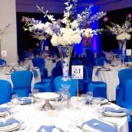Royal Blue Wedding Reception Ideas Mesmerizing