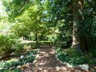 Shade Garden Flowers Landscaping Gardening Ideas