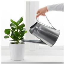 Socker Watering Can Outdoor Galvanised