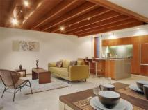 Solid Wooden Ceiling Designs Living Room Interior