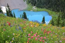 Spring Hikes Ouray County Chipeta Solar Springs