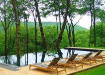 Stunning Outdoor Hangouts Decks Forest