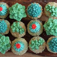 Succulent Cactus Cupcakes Diyangelicamademe