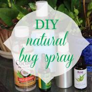 Summer Here Diy Natural Bug Spray Recipe Eat Drink