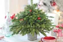 Table Top Christmas Trees Ideas Home Collection