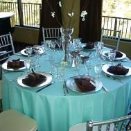 Teal Wedding Decorations Romantic Decoration