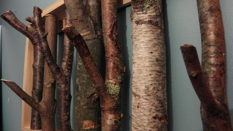 Tree Branch Coat Rack Made Order