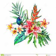 Tropical Paradise Bouquet Stock Illustration