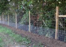 Types Deer Fencing Backyard Fence Ideas Gogo Papa