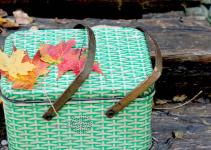 Unforgettable Outing Fall Picnic Essentials