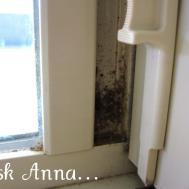 Washing Windows Vinegar Help Streaking Trusper