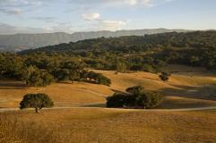 Zaca Creek Ranch Los Olivos Vacation Rental Home