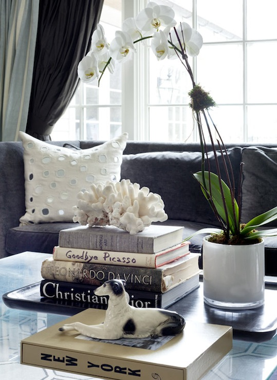 Coffee Table Books   Contemporary   living room   Tiffany Eastman     Coffee Table Books