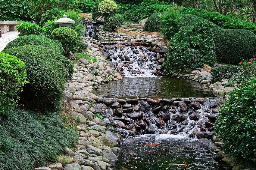 Above Ground Garden Pond