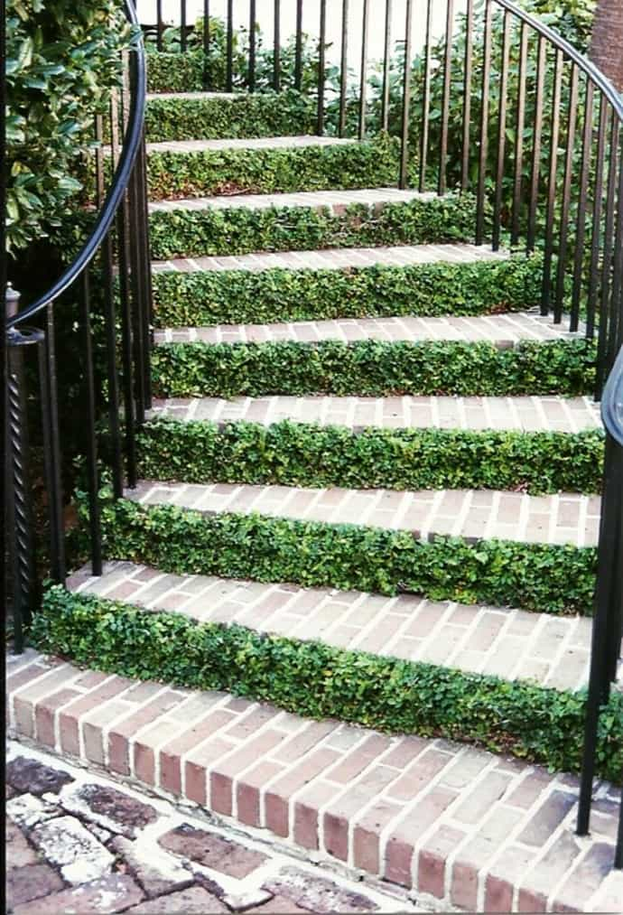 Feel The Nature 15 Examples Of Natural Staircase